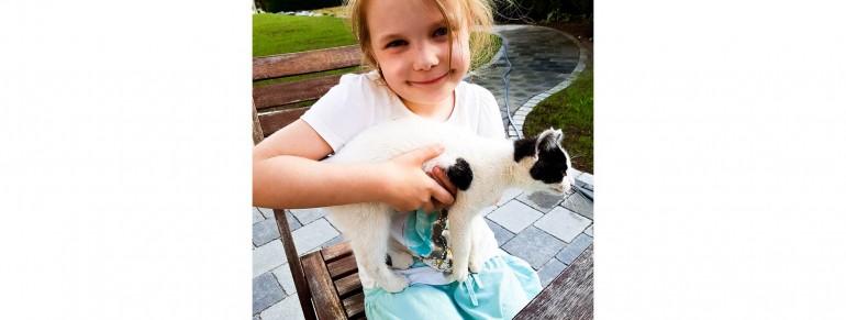 Das kleine Kätzchen hat einen Namen!