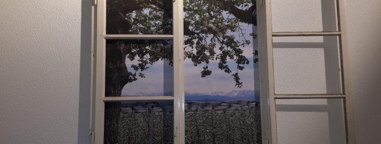 Fenster zum Blütenmeer